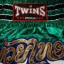 Шорты TWINSTWS-865-3Размер XL