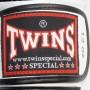 Боксерские перчатки TWINS BGVL-11 Black-White 12 oz