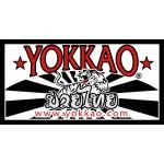 Yokkao Купить, Перчатки, шорты Yokkao, купить шорты